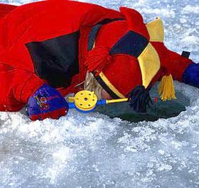 Радужная форель – в течение всей зимы!