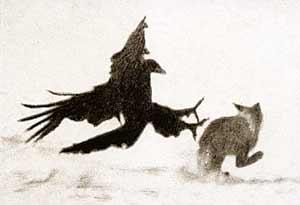 фото орла на охоте